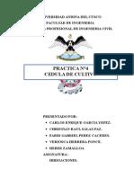 CARATULA.doc