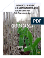 Cultura da Soja