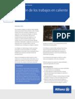 ARCN-Hot-Work-Management-2014_SpanichSouthAmerica.pdf