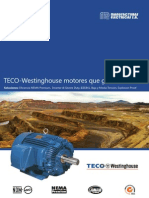 Motores Teco Westinghouse