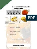 practica3pectinas-130107230004-phpapp02.docx