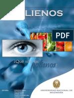 Completo Revista Polienos