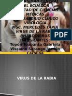 Virus de La Rabia