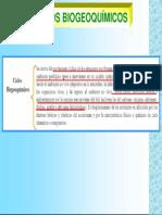 CLASES_CICLOS_BIOGEOQUIMICOS.pdf