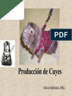 Produccion de Cuyes11
