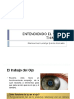 Entendiendo El Visual Thincking