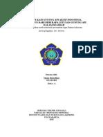 Klasifikasi Gunung API Aktif Indonesia