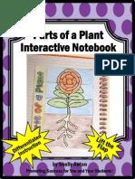PlantsPartsofaFlowerDiagramInteractiveNotebooksBiologyLifeSciences