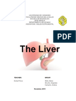 The Liver FINAL