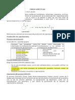 Nylon6-Caprolactama-Dueñas