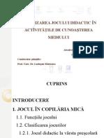 Campean Maria-Nicoleta Disertatie PETSM