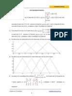 Autoexamen parcial MEF.pdf