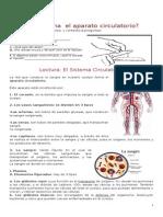 Guia Sistema Circulatorio CAMILA