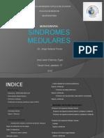 Monografia. Sindromes Medulares.
