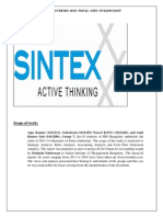 Sintex Analysis