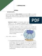 233918374-INFORME-N-16-REGULACION-DE-SECRECION-GASTRICA.docx