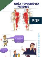anatomia-topografica-forense.ppt