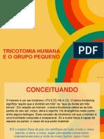 Tricotomia Humana