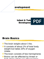 brain dev-2