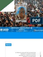 Tradicion Guadalupana en México 2014