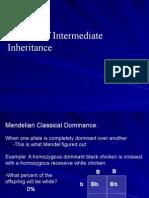 intermediate inheritance patterns ppt