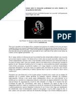 Mercado Cero. Contradicciones entre la formación profesional en artes visuales y la estructura del mercado de sus productos derivados