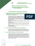 orientaciones para áreas no lingüísticas