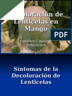 Decoloración de Lenticelas en Mango