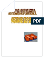 1452367431 Pastrama de Porc