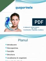 Aquaporinele