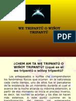 WE TRIPANTU Kam Wiñoy Txipantu