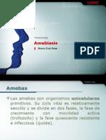 AMEBIASIS INTESTINALES