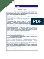 Definicao de Med. Liminar.pdf