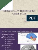 Diencefalo y Hemisferios Cerebrales