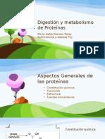 Digestion y Metabolismo de Proteínas