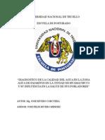 tesis doctorado diagnósitico calidad del agua