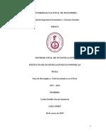 Informe Final de Investigación 2014 - IECOS - Carlos García