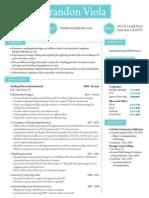 bv resume 2015
