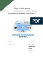 Sistema de Información Gerencia