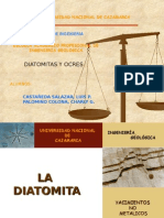Exposicion de Diatomita
