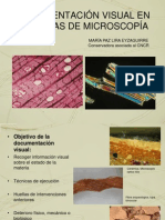 Documentacion visual en tecnicasde microscopía