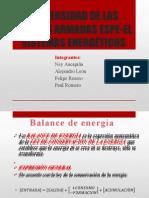 Balance de Sistemas Energéticos Abiertos