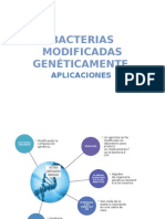 BACTERIAS MODIFICADAS GENÉTICAMENTE.pptx