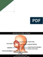 Etiologi ISPA Genap