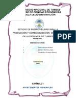 PROYECT. INV. DE CHIFLES ORG..docx