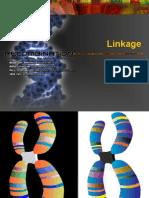 Linkage (Genetics)