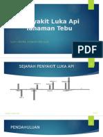 Presentation 4 Kiu