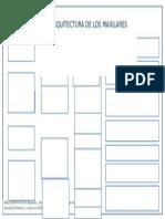 Organigrama Arquitectura de Los Maxi Deber Dos Ciru