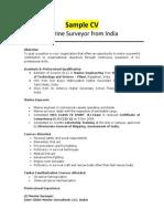 Marine Surveyor - Sample CV 1