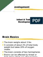 brain dev